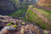 Image of Palouse River Canyon near Palouse Falls