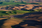 Image of Evening Light on The Palouse, Kamiak Butte