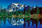 Image of Mount Shuksan reflected in Picture Lake, North Cascades