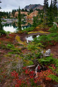 Image of Fall Colors at Rampart Lakes, Alpine Lakes