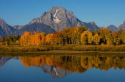 Image of Mount Moran and aspen reflection at Oxbow Bend, Grand Teton National Park