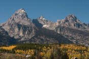 Image of Grand Teton and Cathedral Group, Grand Teton National Park