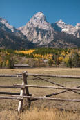 Image of Grand Teton above buch-and-rail fence, Grand Teton National Park