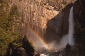 Image of Rainbow and Lower Yosemite Falls